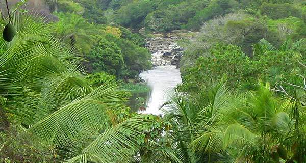 Reserva de Sapiranga