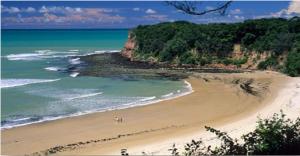 Praia Curuípe