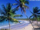 Praia da Cueira - Boipeba - Bahia