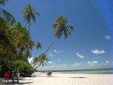 Paisagem típica do litoral sul são as dunas, lagoas e praias com falésias e corais