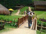 Museu da cachaça de Maranguape