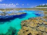A praia de Taipu de Fora é considerada uma das mais belas do Brasil