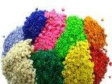 Flor Sempre-Viva é típica da Chapada Diamantina vira símbolo de preservação