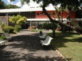 Museu do Homem do Nordeste em Recife abriga acervo de 15 mil peças