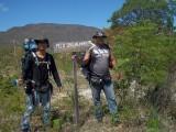 Pico das Almas