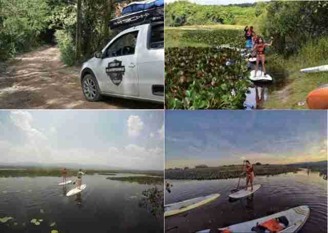 Marimbus é o mini pantanal da Chapada Diamantina