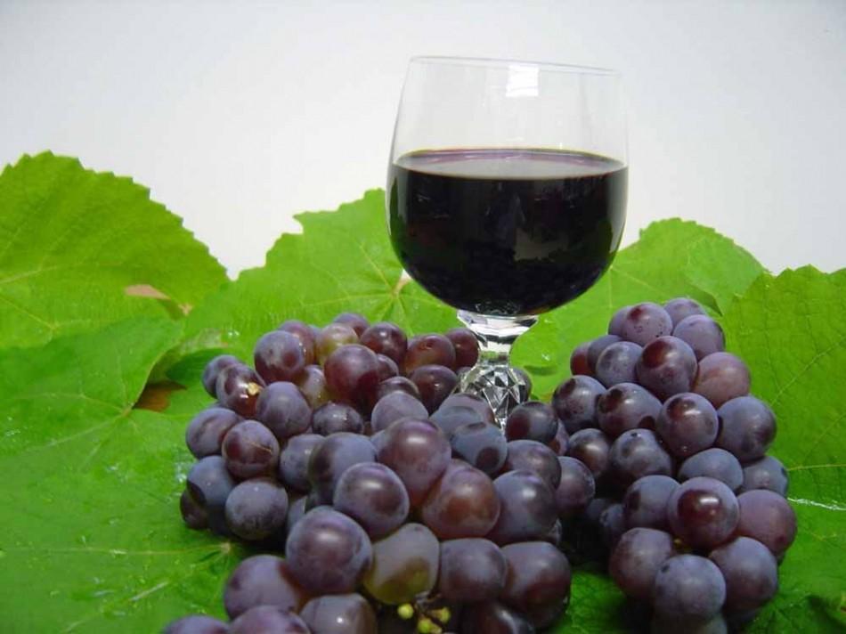 Bahia ganha Vapor do Vinho e enaltece o enoturismo