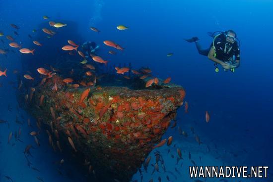 Naufrágio da Corveta Ipiranga no arquipélago de Fernando de Noronha