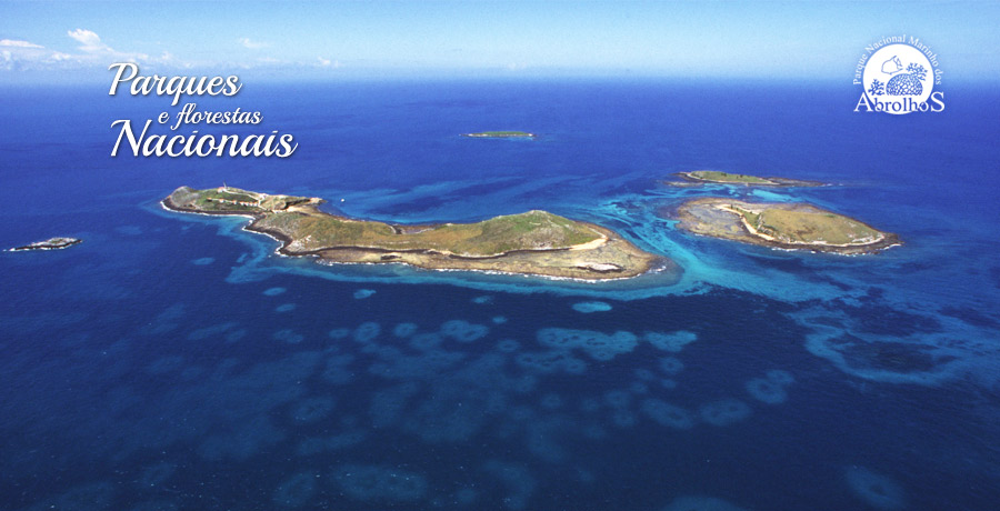 Fundo do mar do Arquipélago de Abrolhos