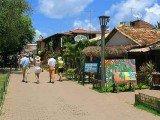 Alameda do Sol - Praia do Forte - Bahia