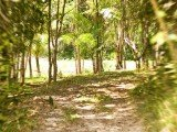Parque Sauípe Bahia