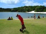 Parques da Cidade de Salvador da Bahia - Lagoa do Abaete