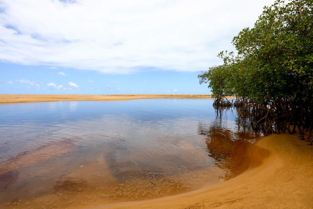 Barra do Rio dos Frades em Trancoso