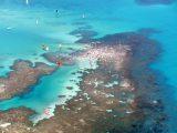 Jangadas nos corais do mar de Maceió