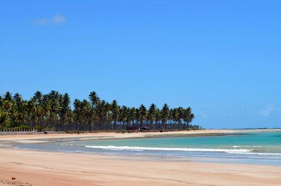 Praia do Marceneiro em Alagoas