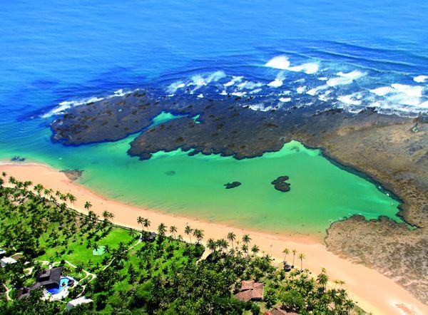 Taipus de Fora na Bahia
