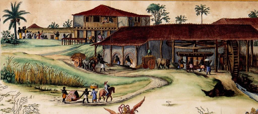 História da cana-de-açúcar na colonização do Brasil - video