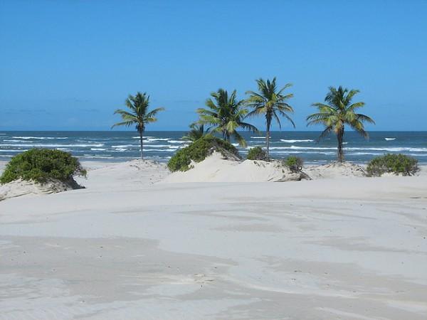 A maior atração Jandaíra é o Distrito de Mangue Seco na Bahia