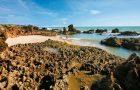 Costa do município do Conde na Paraíba reserva cenários paradisíacos