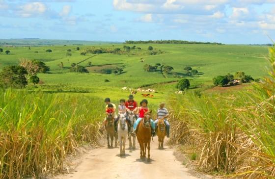 Rota do Turismo Rural de Pernambuco