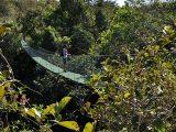 ponte suspensa no Complexo Turístico Pedra Caida