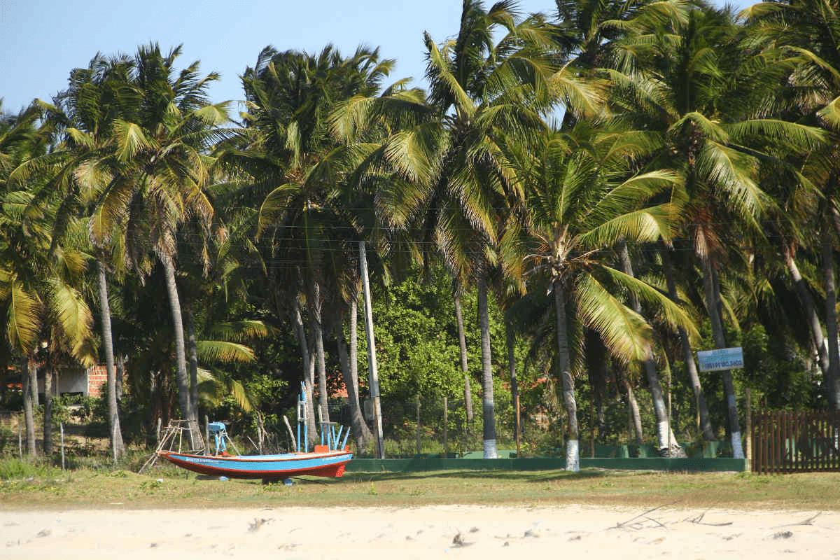 Flecheiras em Trairi no Ceará