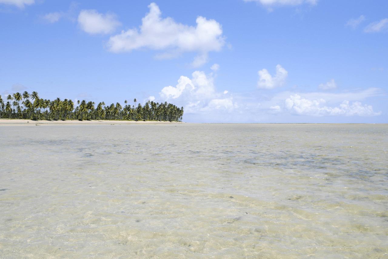 Praia do Patacho em Porto de Pedras - Alagoas